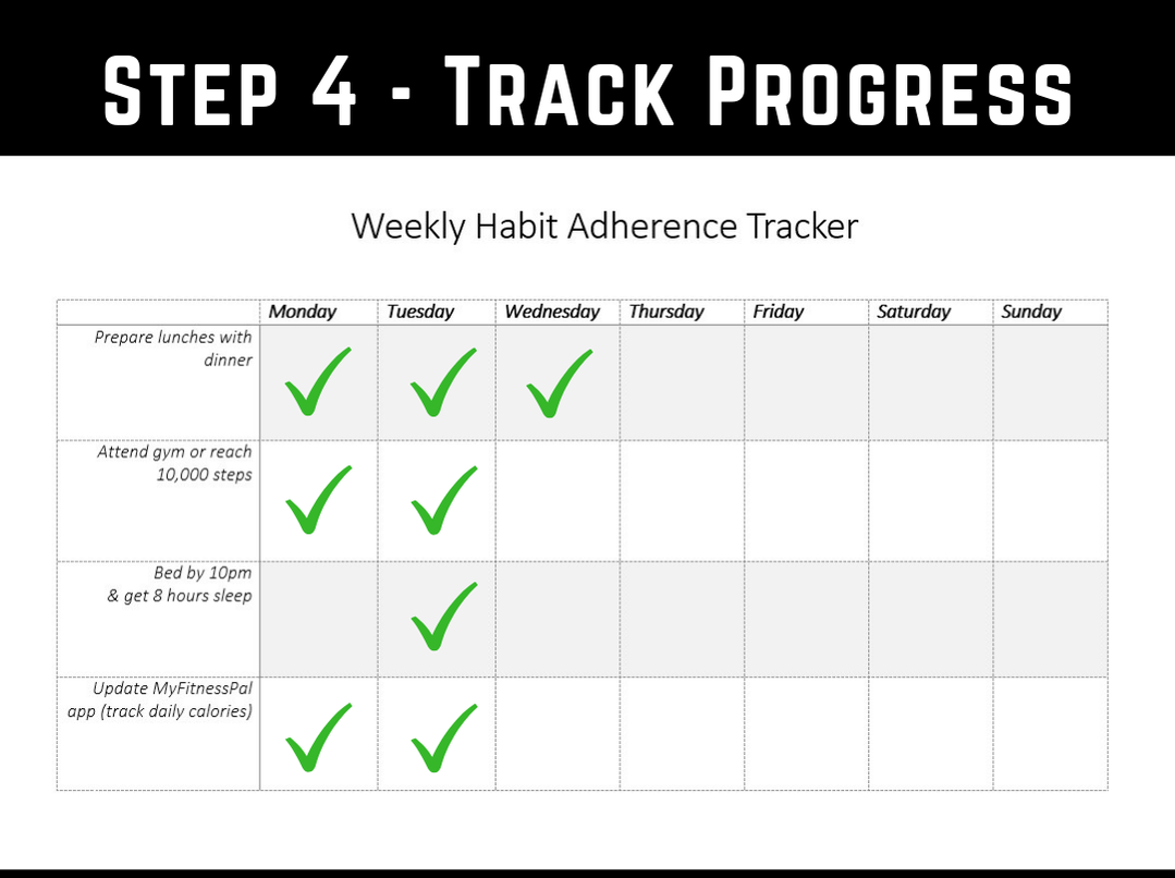 Goal Setting - Step 3 - Track your progress and stay accountable